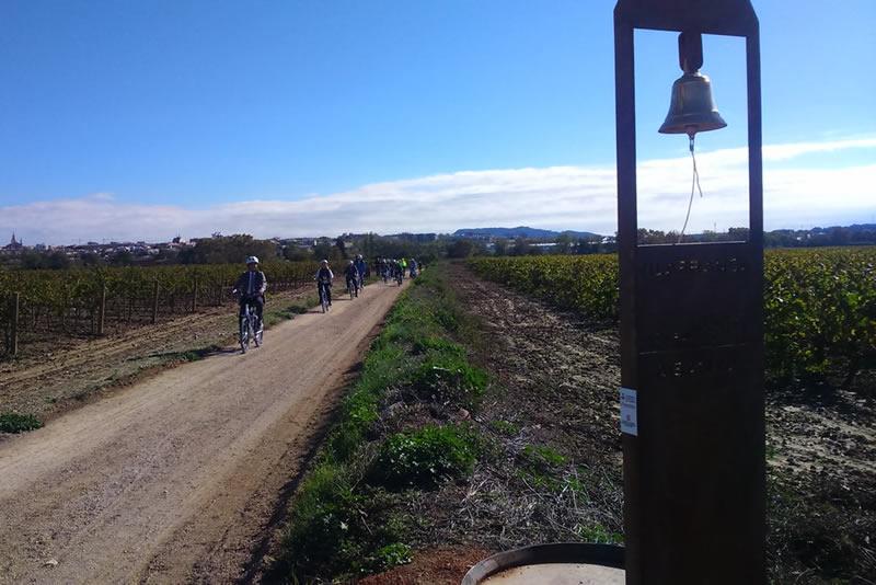 Camí del Vi de Vilafranca del Penedès
