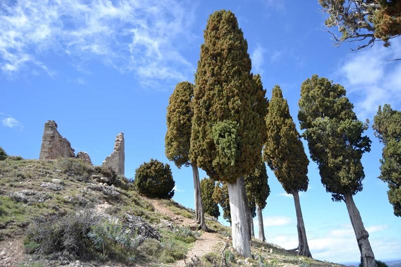 Santa Bàrbara a Horta de Sant Joan