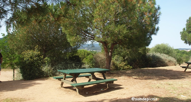 zones de picnic parc de la llacuna montcada
