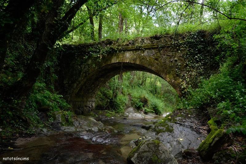 Pont dels Segalars