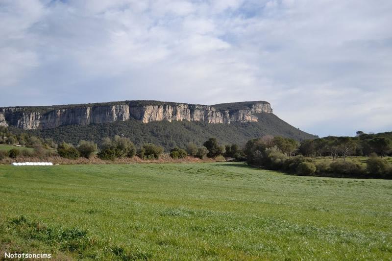 Cingles de Sant Roc d'Amer