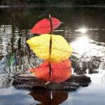 vaixell de tardor amb fulles i troncs