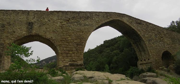 Pont de Pedret i Sant Quirze de Pedret