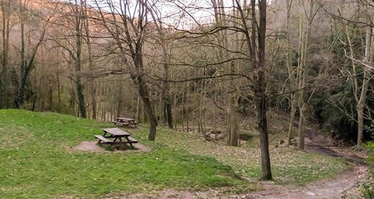 sortides de tardor per gaudir del paisatge de manera tranquil·la
