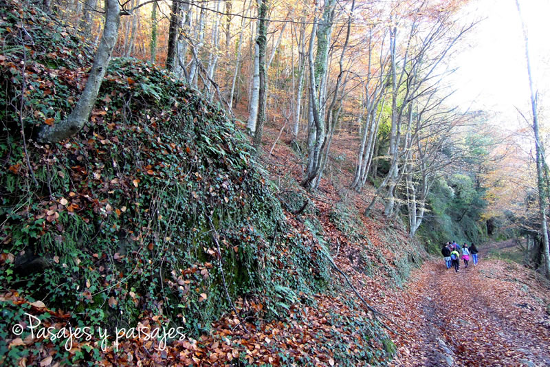ruta circular fins el castell de Colltort