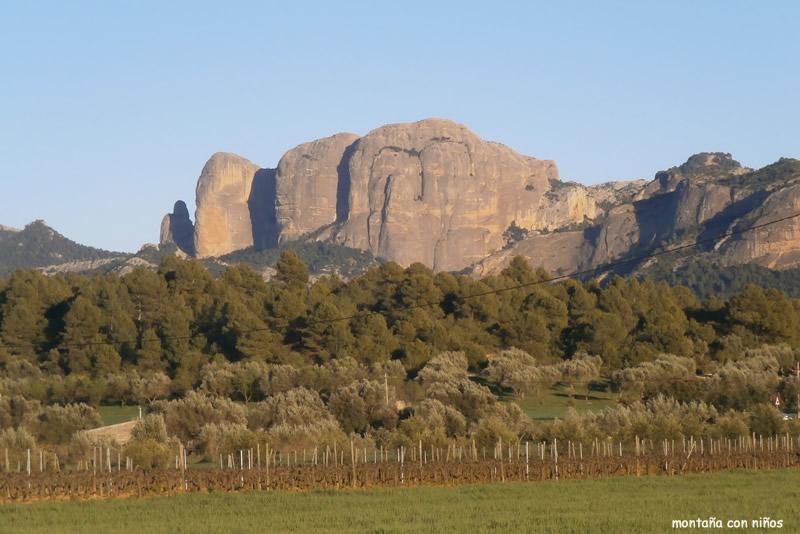 Roques de Benet a Horta de Sant Joan