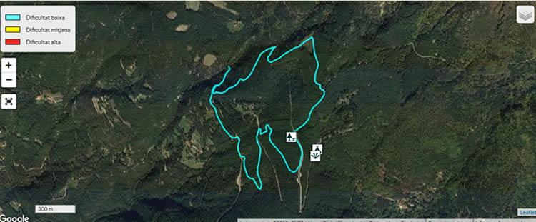 Itinerari forestal de Fontmartina