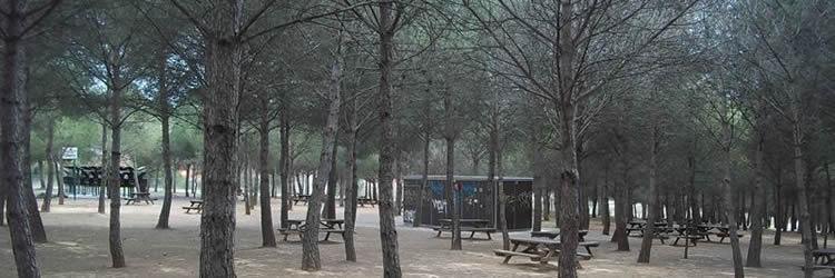 5 excursions amb pícnic