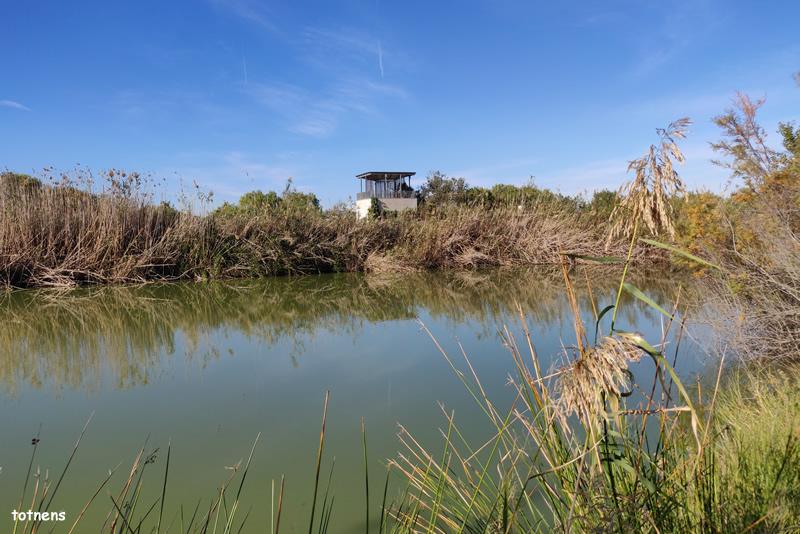 Mirador de Cal Lluquer al Delta del Llobregat