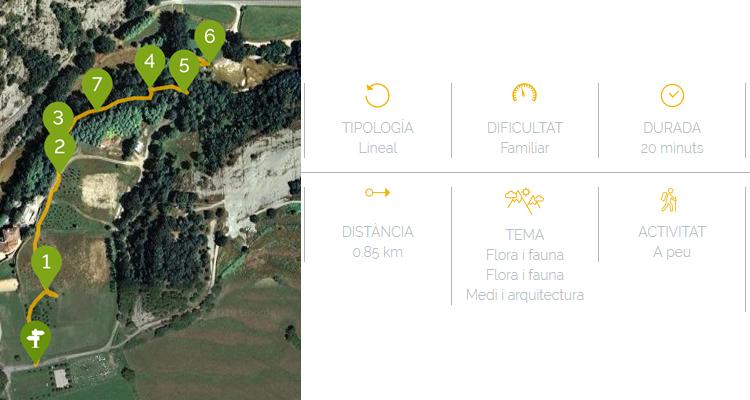 ruta mediambiental del riu Ges a Sant Pere de Torelló