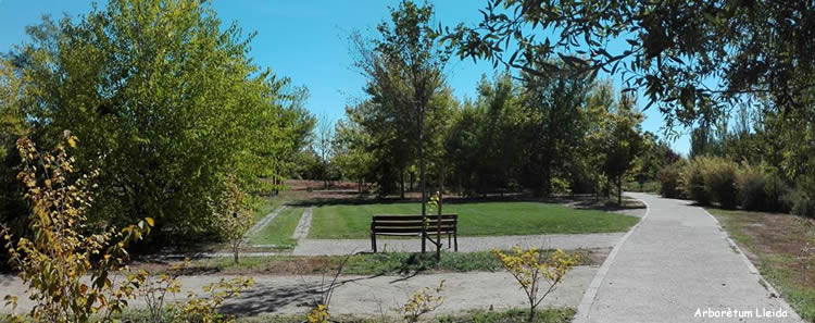 Arborètum de Lleida Dr. Pius Quer i Font