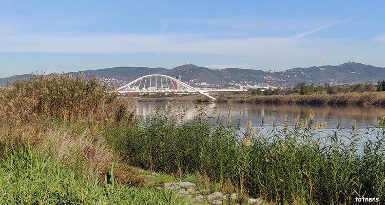 Baix Llobregat, excursions i activitats amb nens