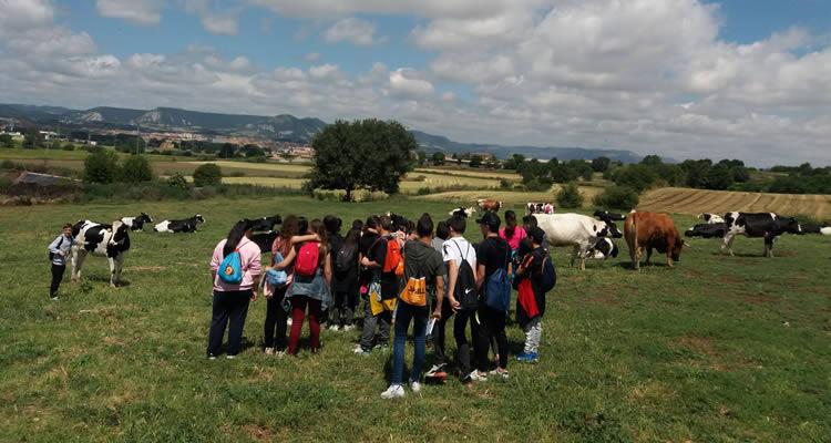 grups escolars a la granja cal rei
