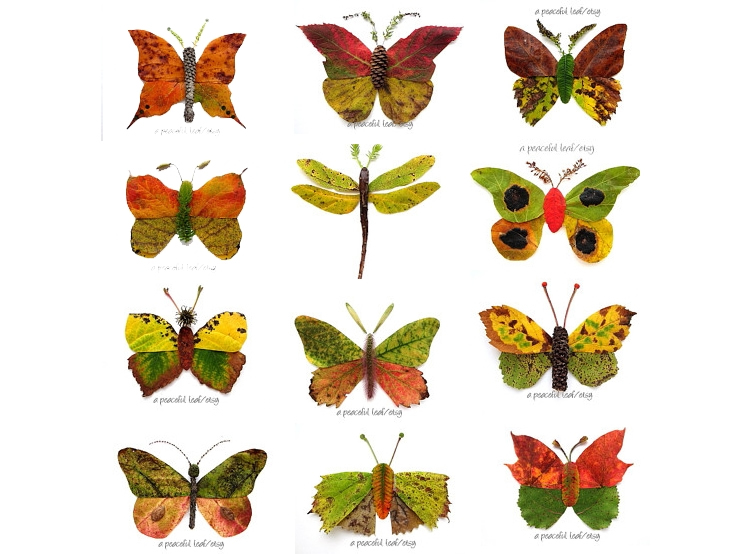 papallones de fulles de colors