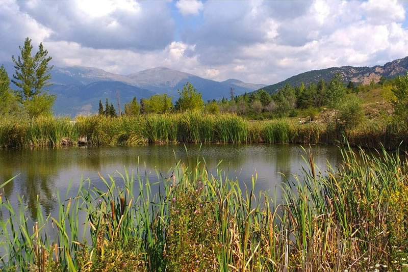 bassa Casa de colonies El Jou Nature