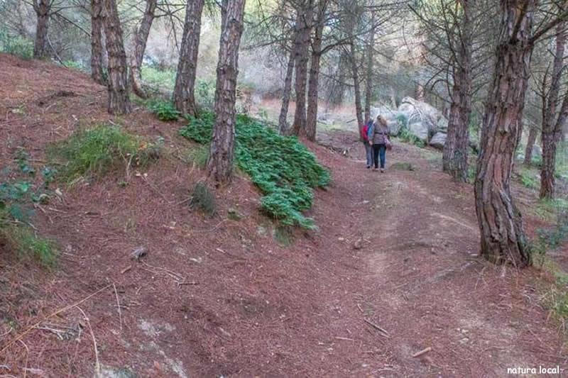 Anella verda de Vilassar de Dalt