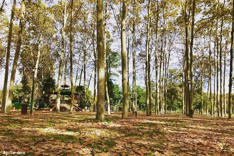 Parc Prudenci Bertrana de Tordera
