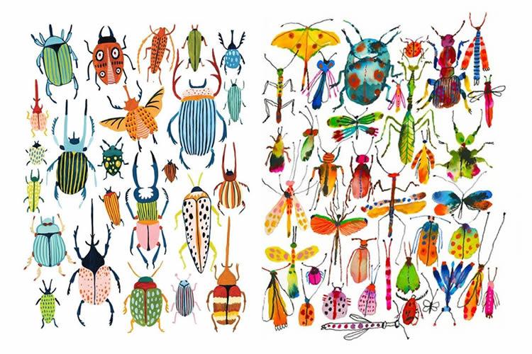fem una col·lecció d'insectes inventats dibuixant