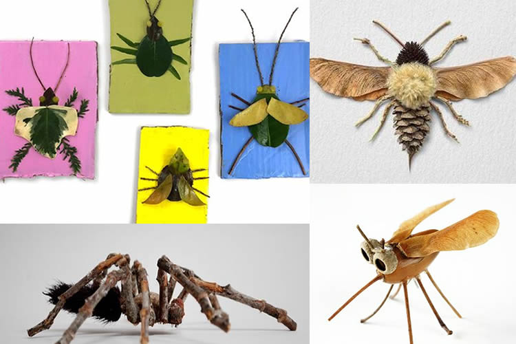 fem una col·lecció d'insectes inventats material natural
