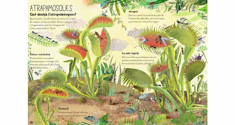 El gran llibre de les flors - Editorial Juventud
