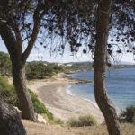 Senders de la Mediterrània seguint el GR-92