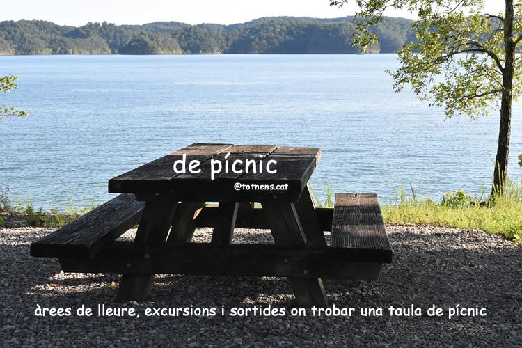 de picnic totnens