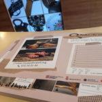 gimcana al museu etnografic de Ripoll