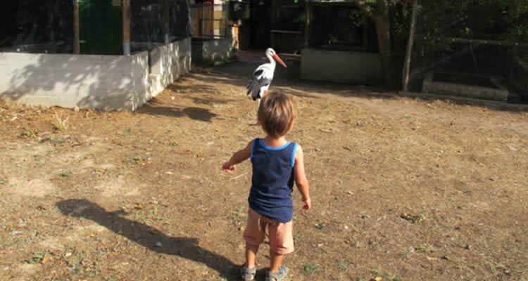 camadoca nens