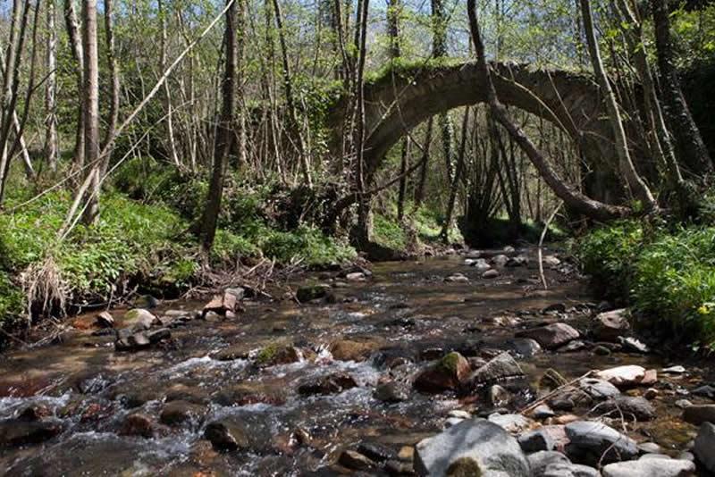Els ponts de Viladrau
