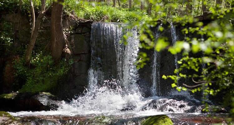 aigua a Viladra
