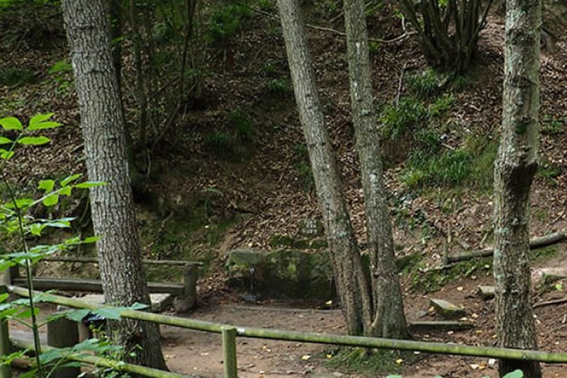 ruta de la font de Gurb a Sant Hilari Sacalm somdepicnic