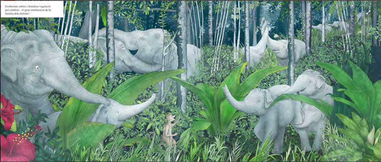 Quan la selva desapareix - Zahorí books
