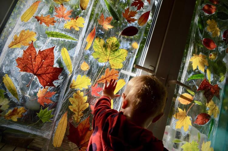 Cortina de tardor amb fulles