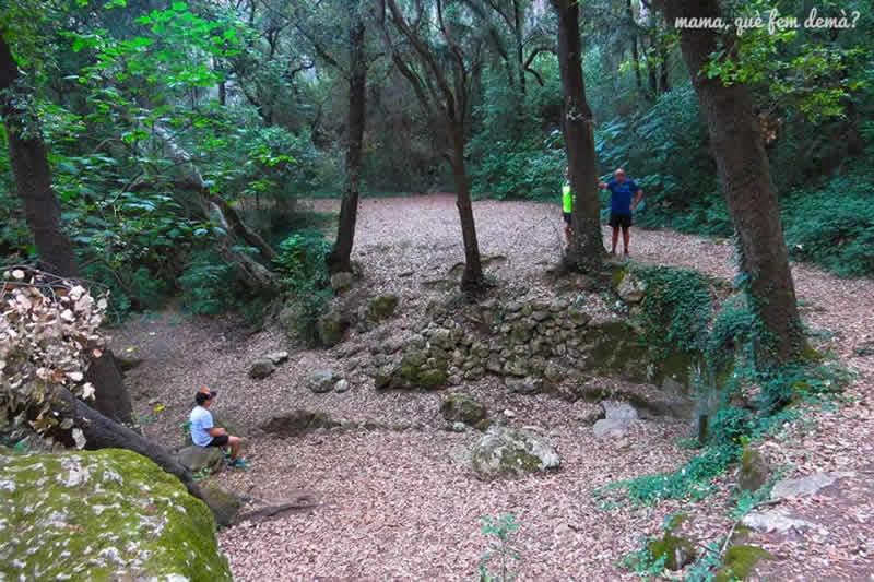 Font d'Horta al Pantà de Foix