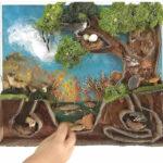 diorama del bosc amb cartro