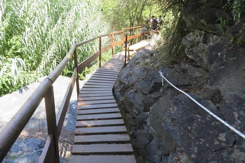 Camí del Rec a la Selva del Camp