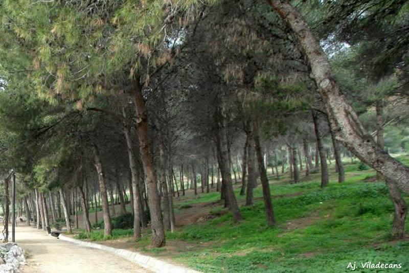 Parc Forestal de Mas Ratés