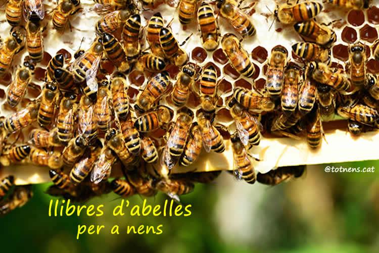 llibres d abelles i mel per a nens