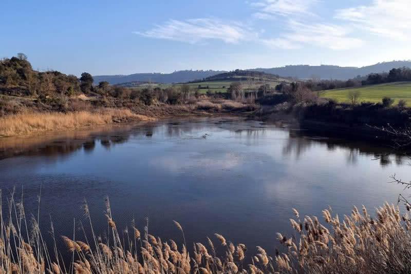 bassa de Palouet