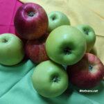 receptes amb poma